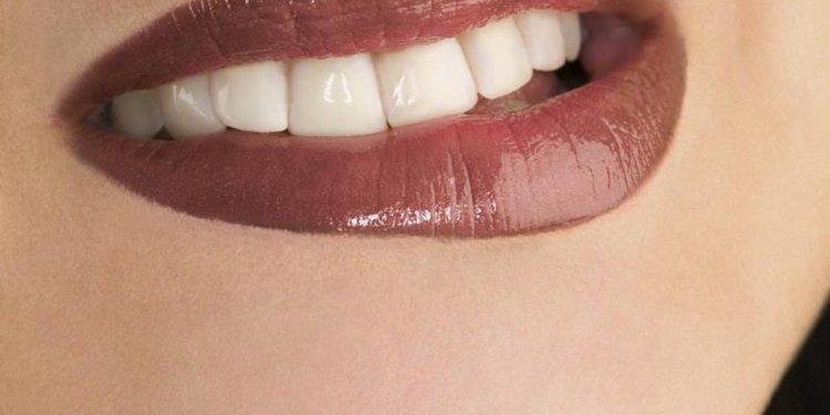 Human Teeth and Digestion